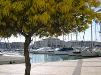 The port in Fréjus