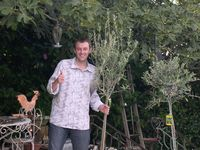 Johann with new olive trees